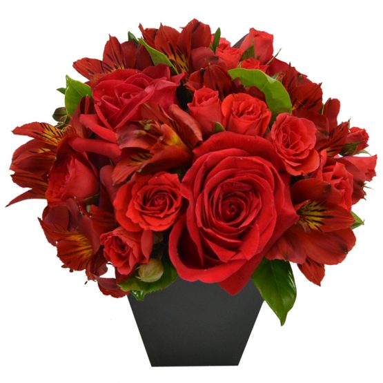 arranjo de rosas vermelhas com astromélias